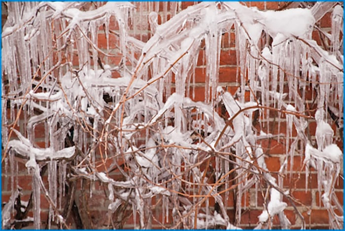 icd 10, icicles